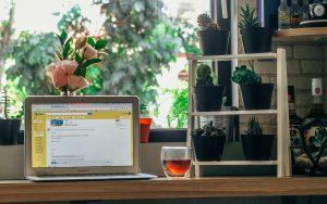 laptop-kop thee-raam