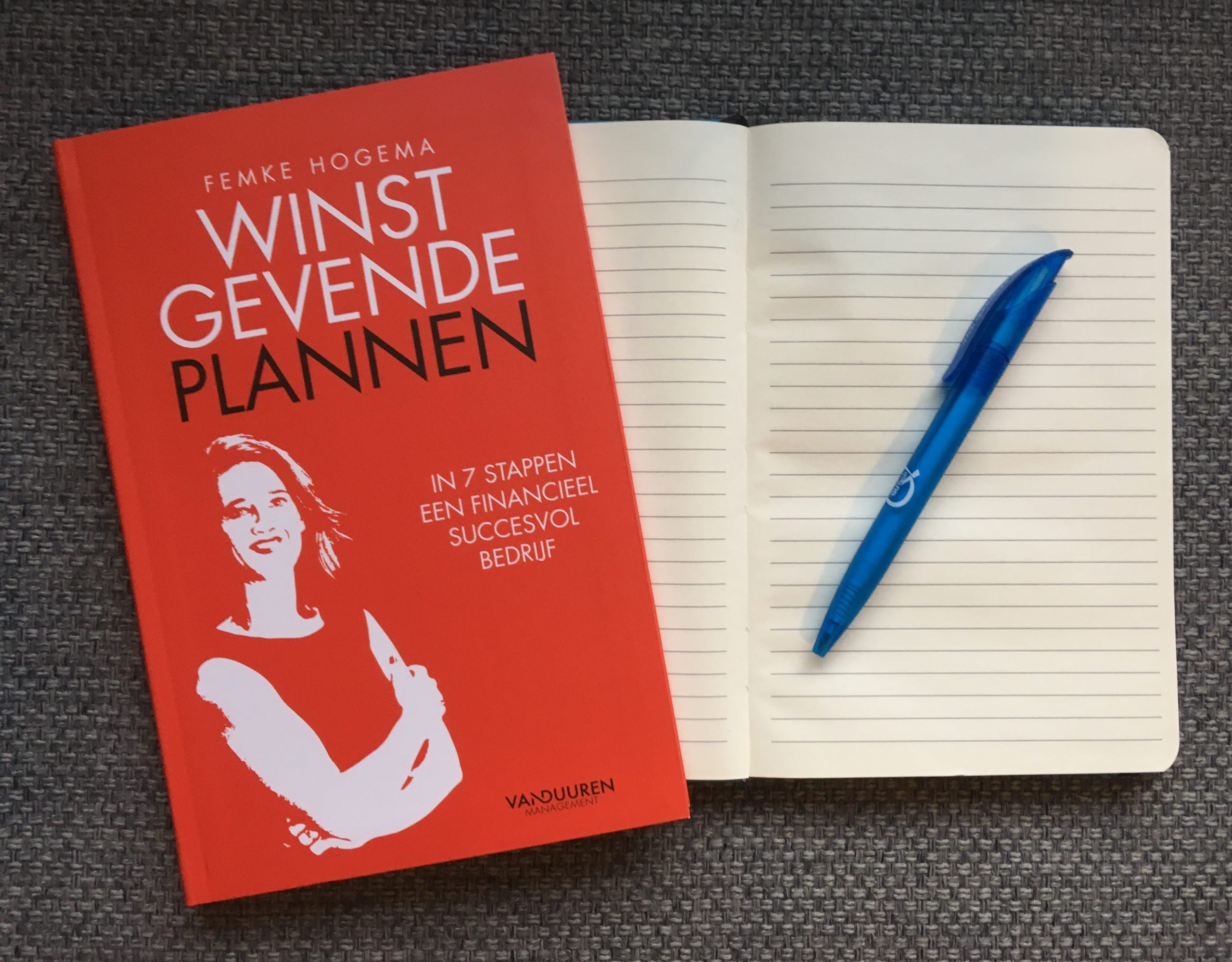 Recensie boek-Winstgevende-Plannen-Dymph-Neeteson